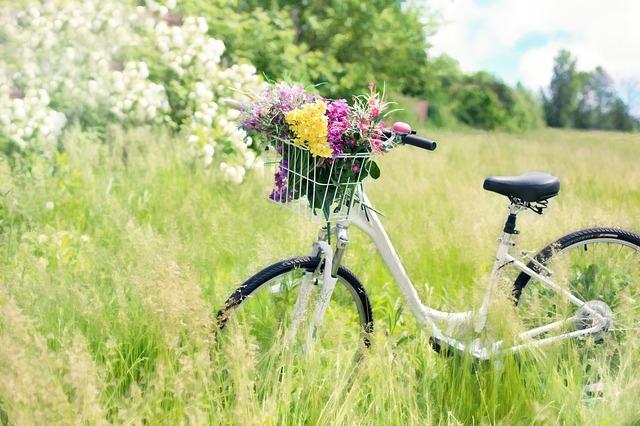 Kerékpárok kedvező áron